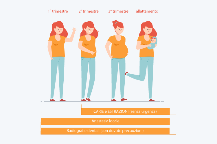 dentista in gravidanza   grafica stadi